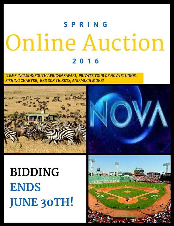 Online Auction Image